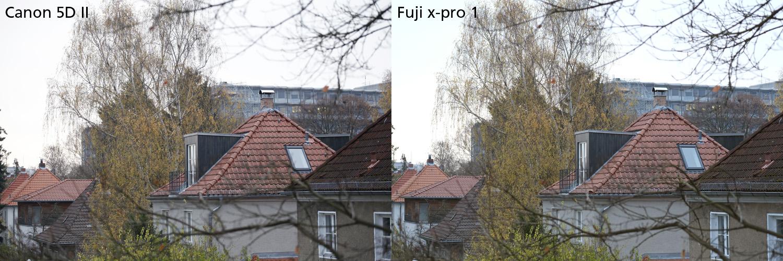vergleich canon 5D fuji x-pro1