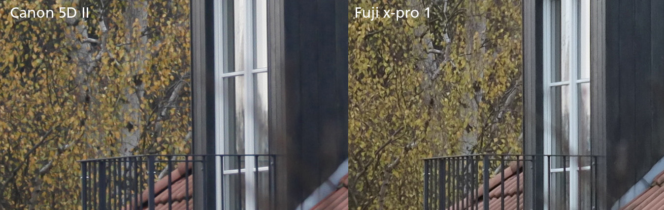 testbild canon 5D fuji x-pro1