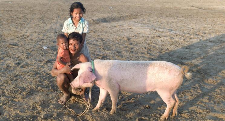 reise-ansichten myanmaren